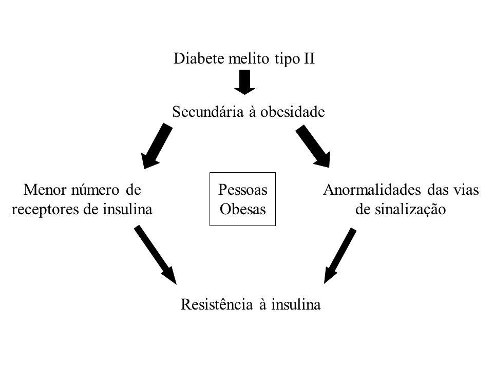 Diabete melito tipo II Secundária à obesidade Menor número de receptores de insulina Anormalidades das vias de sinalização Pessoas Obesas Resistência