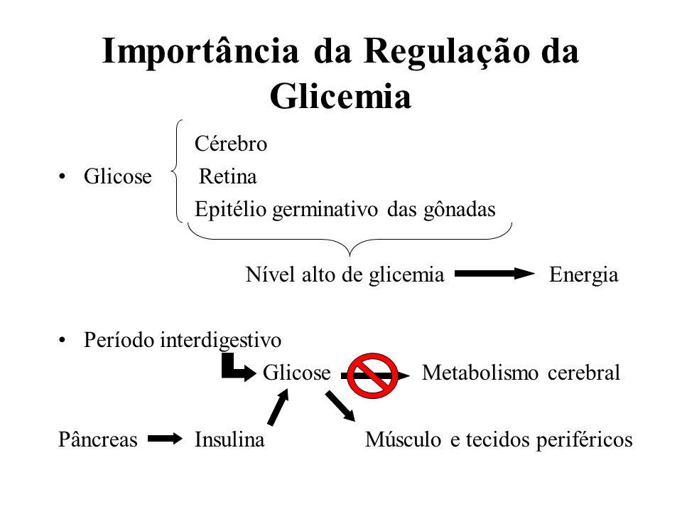Importância da Regulação da Glicemia Cérebro Glicose Retina Epitélio germinativo das gônadas Nível alto de glicemia Energia Período interdigestivo Gli