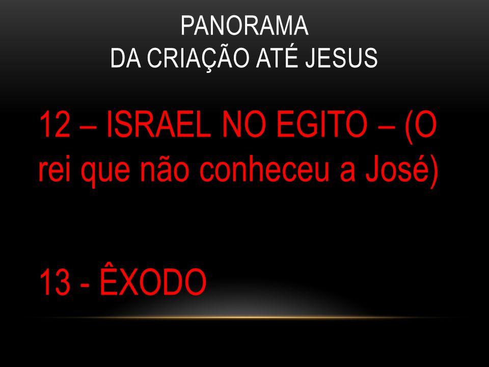 PANORAMA DA CRIAÇÃO ATÉ JESUS 12 – ISRAEL NO EGITO – (O rei que não conheceu a José) 13 - ÊXODO