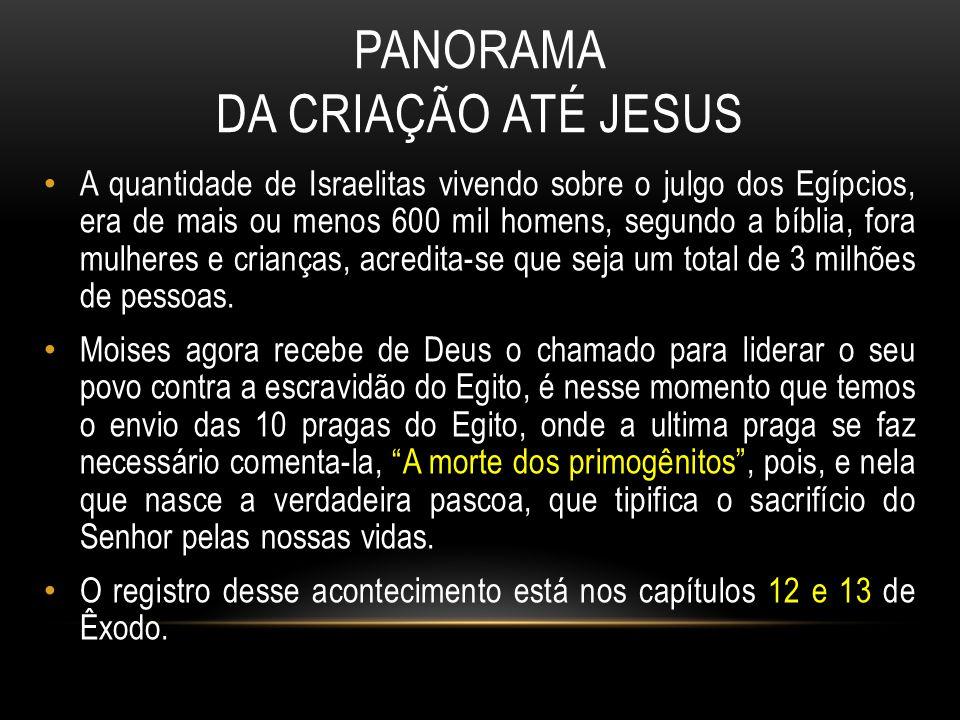 14 – Os propósitos de Deus 15 – A travessia do Mar vermelho PRÓXIMA AULA TAREFA DE CASA Ler Levítico 1 ao 15.