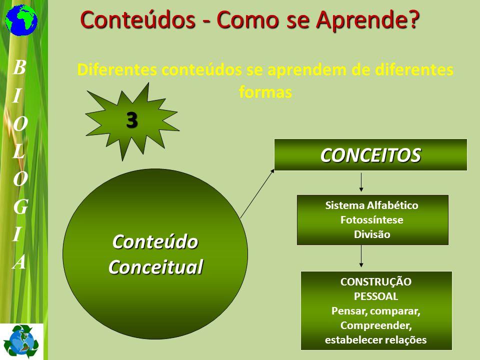ConteúdoConceitual CONCEITOS Sistema Alfabético Fotossíntese Divisão CONSTRUÇÃO PESSOAL Pensar, comparar, Compreender, estabelecer relações 3 Conteúdo