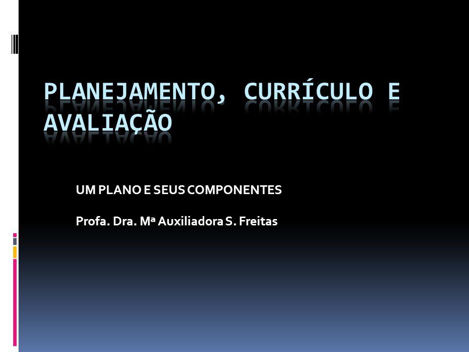 UM PLANO E SEUS COMPONENTES Profa. Dra. Mª Auxiliadora S. Freitas
