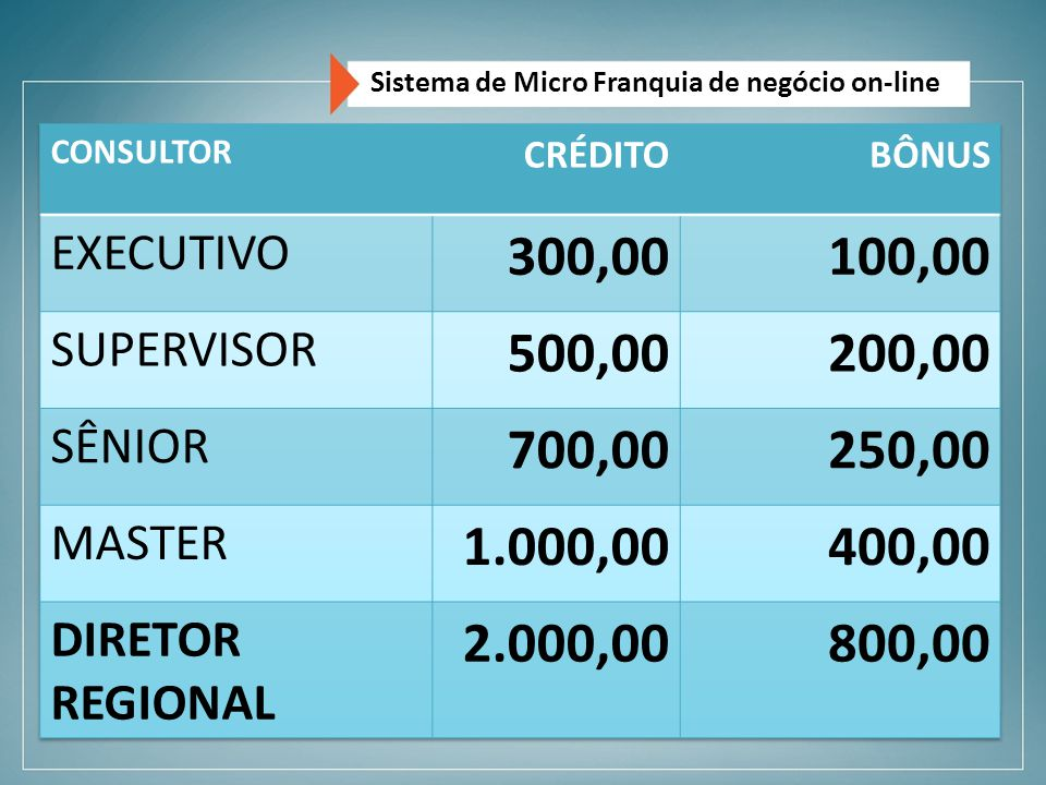 Sistema de Micro Franquia de negócio on-line