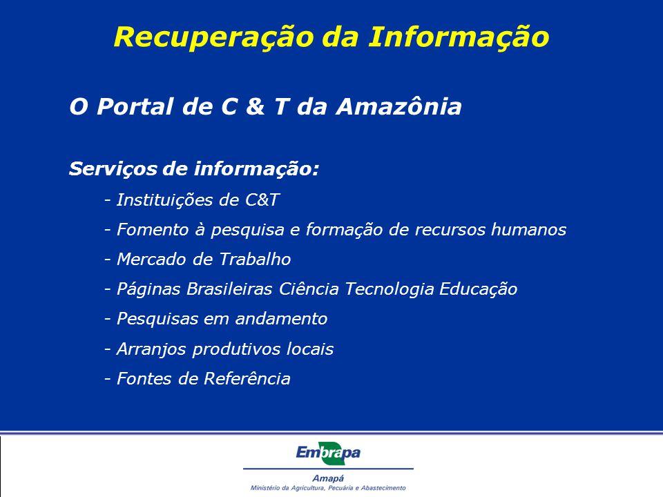 Recuperação da Informação O Portal de C & T da Amazônia Serviços de informação: - Instituições de C&T - Fomento à pesquisa e formação de recursos humanos - Mercado de Trabalho - Páginas Brasileiras Ciência Tecnologia Educação - Pesquisas em andamento - Arranjos produtivos locais - Fontes de Referência