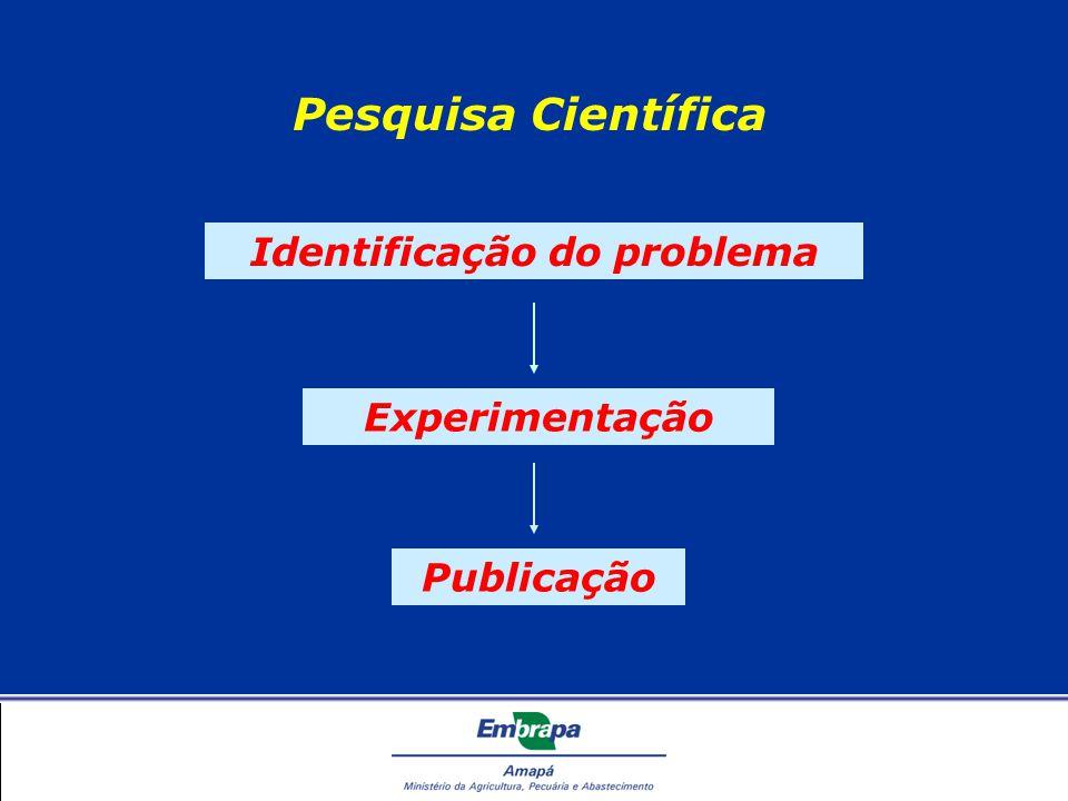 Recuperação da Informação Plataforma Lattes O que é o Currículo Lattes.