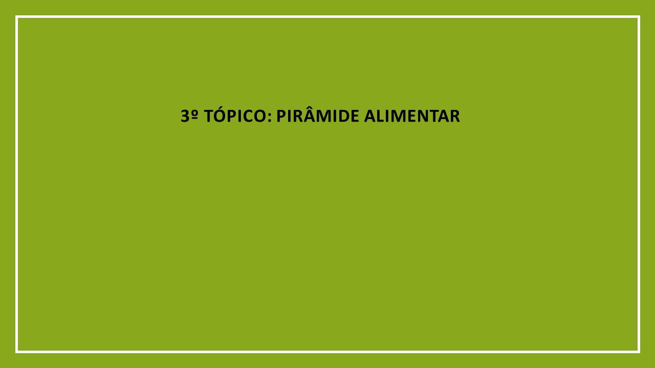 3º TÓPICO: PIRÂMIDE ALIMENTAR