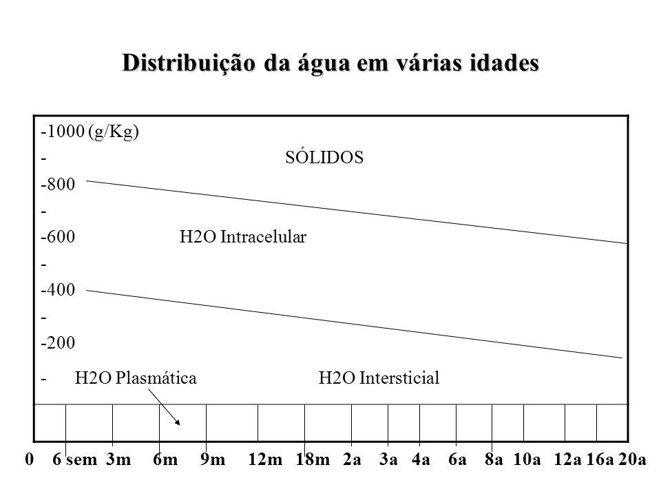 Distribuição da água em várias idades -1000 (g/Kg) - SÓLIDOS -800 - -600 H2O Intracelular - -400 - -200 - H2O Plasmática H2O Intersticial 0 6 sem 3m 6m 9m 12m 18m 2a 3a 4a 6a 8a 10a 12a 16a 20a