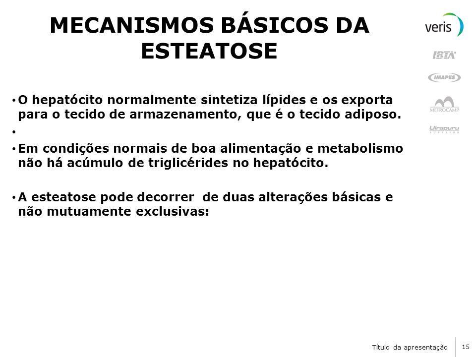 Título da apresentação 15 MECANISMOS BÁSICOS DA ESTEATOSE O hepatócito normalmente sintetiza lípides e os exporta para o tecido de armazenamento, que é o tecido adiposo.