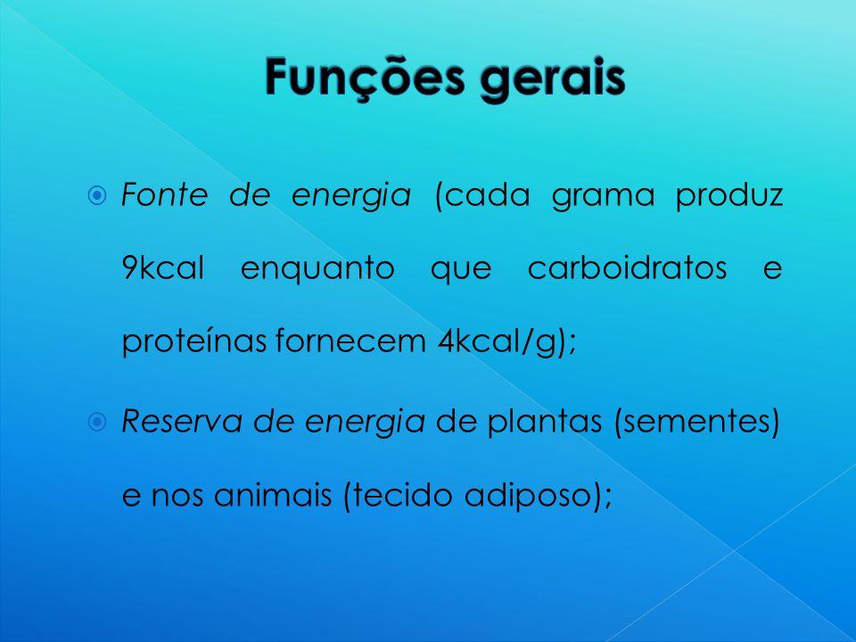  Fonte de energia (cada grama produz 9kcal enquanto que carboidratos e proteínas fornecem 4kcal/g);  Reserva de energia de plantas (sementes) e nos animais (tecido adiposo);