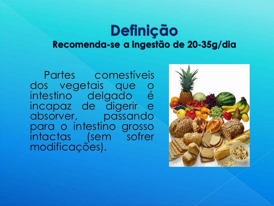 Partes comestíveis dos vegetais que o intestino delgado é incapaz de digerir e absorver, passando para o intestino grosso intactas (sem sofrer modificações).
