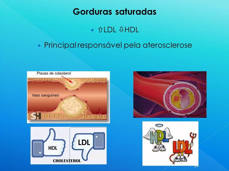 LDL  HDL Principal responsável pela aterosclerose 24 Gorduras saturadas