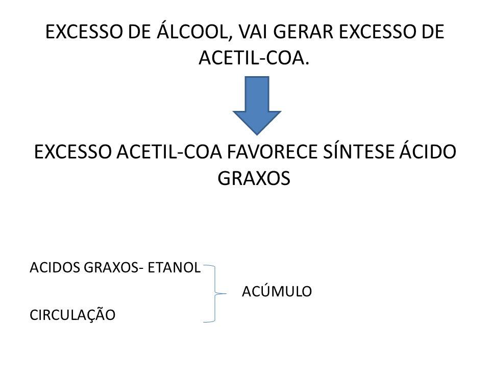 EXCESSO DE ÁLCOOL, VAI GERAR EXCESSO DE ACETIL-COA. EXCESSO ACETIL-COA FAVORECE SÍNTESE ÁCIDO GRAXOS ACIDOS GRAXOS- ETANOL ACÚMULO CIRCULAÇÃO