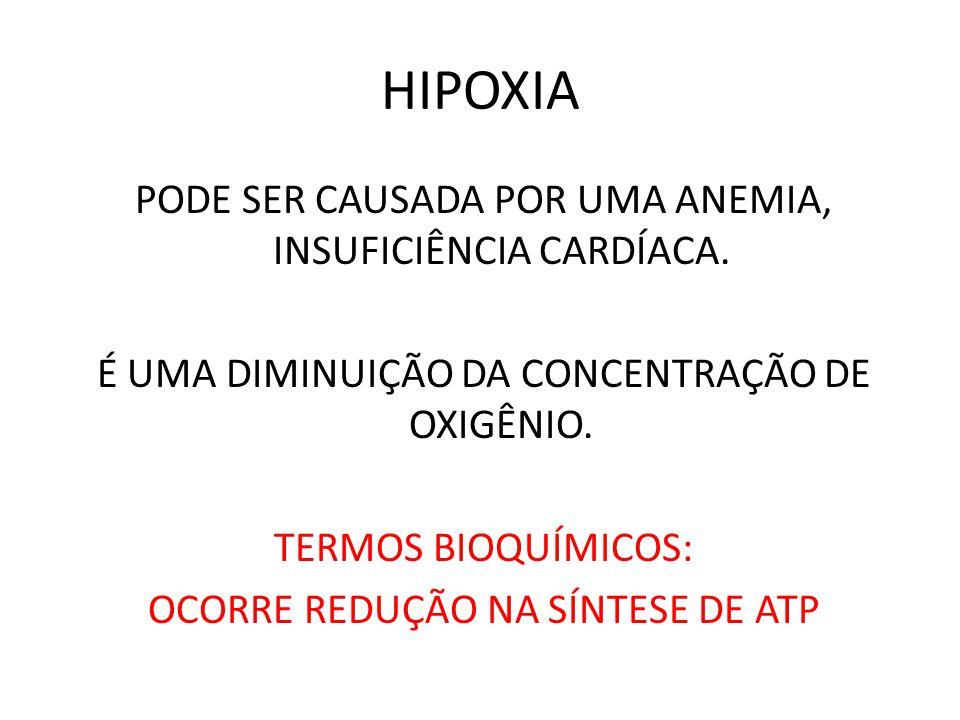 HIPOXIA PODE SER CAUSADA POR UMA ANEMIA, INSUFICIÊNCIA CARDÍACA. É UMA DIMINUIÇÃO DA CONCENTRAÇÃO DE OXIGÊNIO. TERMOS BIOQUÍMICOS: OCORRE REDUÇÃO NA S