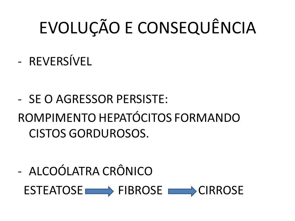 EVOLUÇÃO E CONSEQUÊNCIA -REVERSÍVEL -SE O AGRESSOR PERSISTE: ROMPIMENTO HEPATÓCITOS FORMANDO CISTOS GORDUROSOS. -ALCOÓLATRA CRÔNICO ESTEATOSE FIBROSE