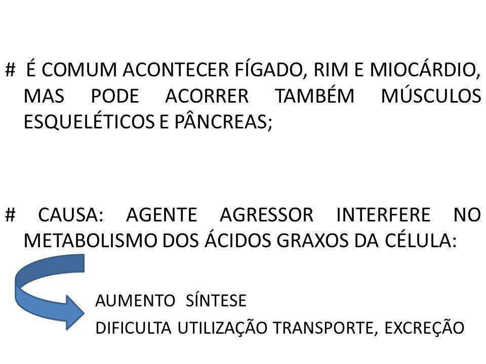# É COMUM ACONTECER FÍGADO, RIM E MIOCÁRDIO, MAS PODE ACORRER TAMBÉM MÚSCULOS ESQUELÉTICOS E PÂNCREAS; # CAUSA: AGENTE AGRESSOR INTERFERE NO METABOLIS