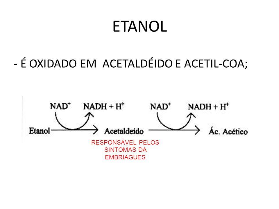 ETANOL - É OXIDADO EM ACETALDÉIDO E ACETIL-COA; RESPONSÁVEL PELOS SINTOMAS DA EMBRIAGUES