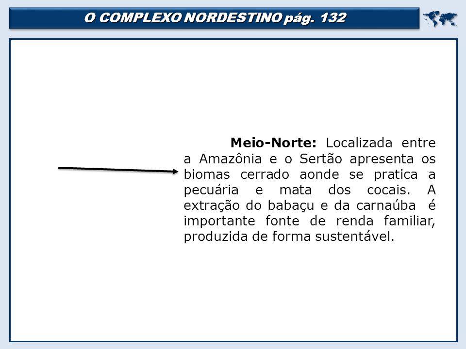 O COMPLEXO NORDESTINO pág.