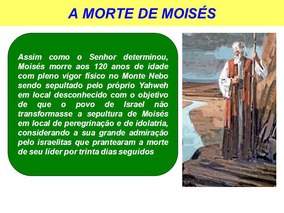 JOSUÉ O SUCESSOR DE MOISÉS A obra de Deus precisava continuar, pois a missão agora era a de conquistar militarmente a terra de Canaã que estava sendo habitada por diversos povos idólatras e pecadores.