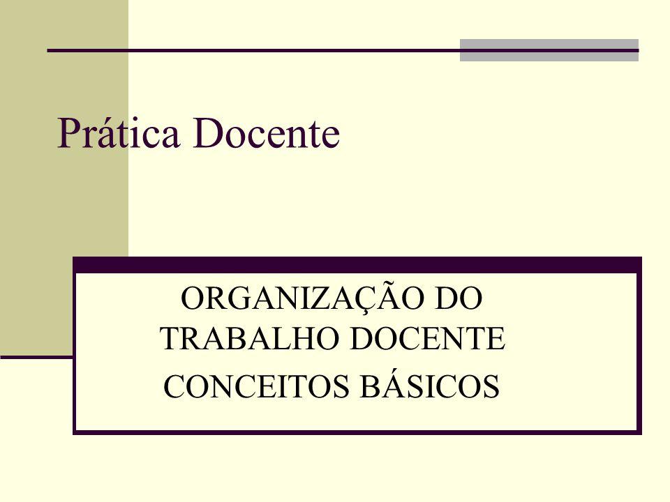 Prática Docente ORGANIZAÇÃO DO TRABALHO DOCENTE CONCEITOS BÁSICOS