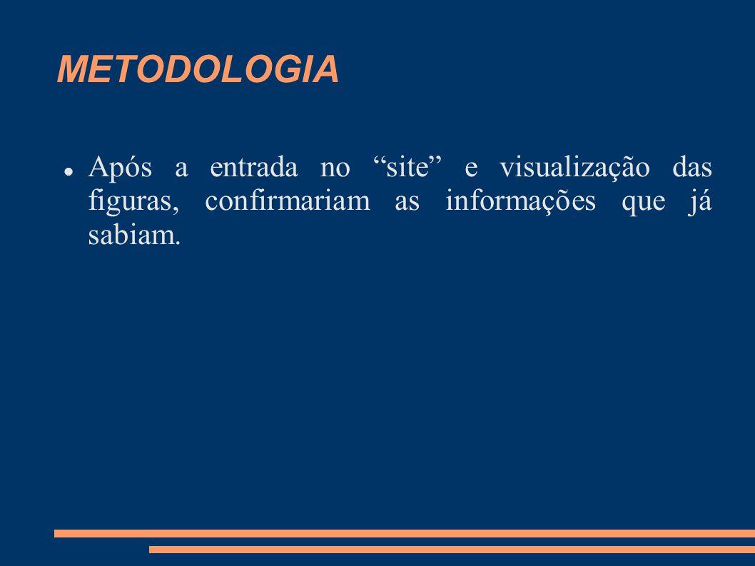 METODOLOGIA Após a entrada no site e visualização das figuras, confirmariam as informações que já sabiam.