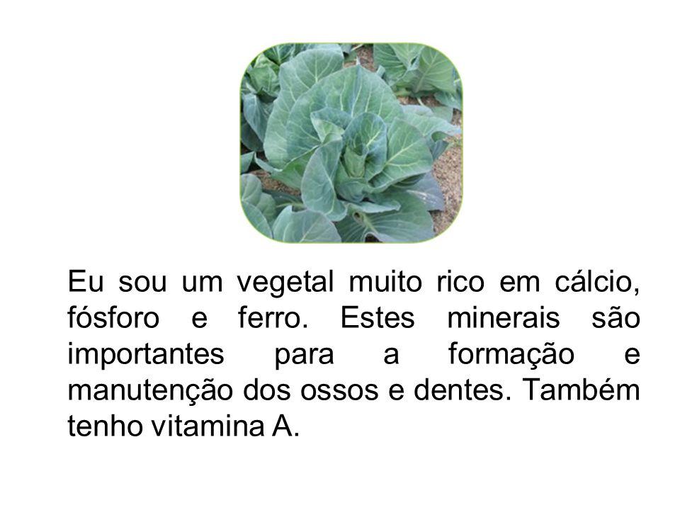 Eu sou um vegetal muito rico em cálcio, fósforo e ferro. Estes minerais são importantes para a formação e manutenção dos ossos e dentes. Também tenho
