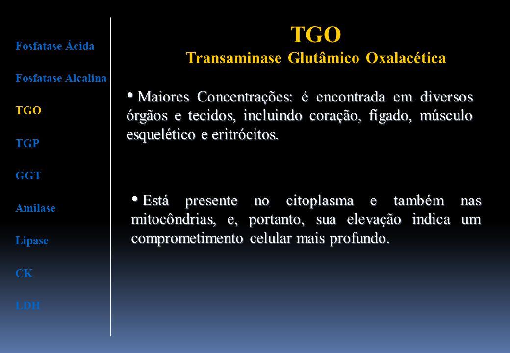 TGO Transaminase Glutâmico Oxalacética Maiores Concentrações: é encontrada em diversos órgãos e tecidos, incluindo coração, fígado, músculo esquelétic
