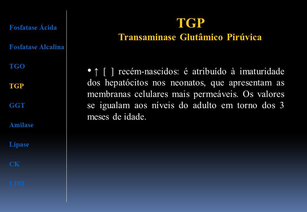 Fosfatase Ácida Fosfatase Alcalina TGO TGP GGT Amilase Lipase CK LDH ↑ [ ] recém-nascidos: é atribuído à imaturidade dos hepatócitos nos neonatos, que