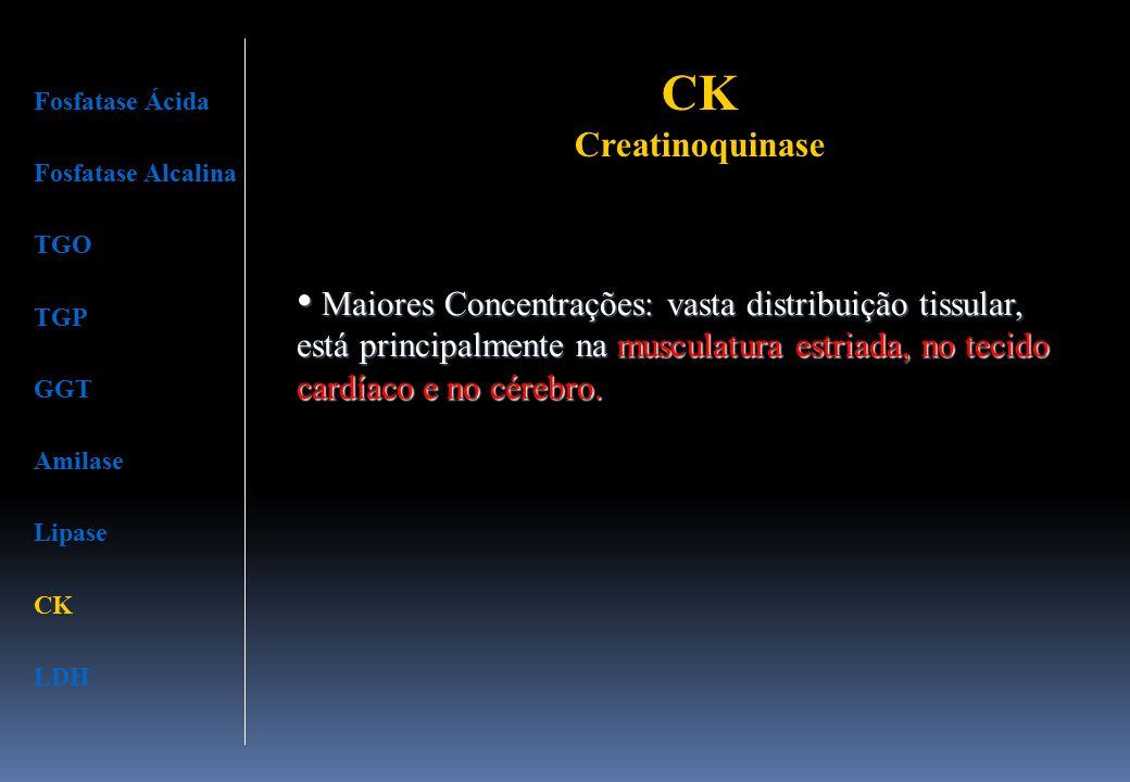 CK Creatinoquinase Fosfatase Ácida Fosfatase Alcalina TGO TGP GGT Amilase Lipase CK LDH Maiores Concentrações: vasta distribuição tissular, está princ