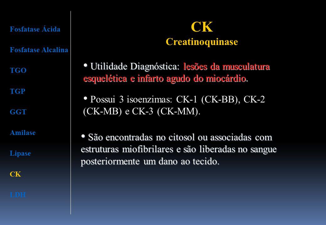 Fosfatase Ácida Fosfatase Alcalina TGO TGP GGT Amilase Lipase CK LDH Utilidade Diagnóstica: lesões da musculatura esquelética e infarto agudo do miocá