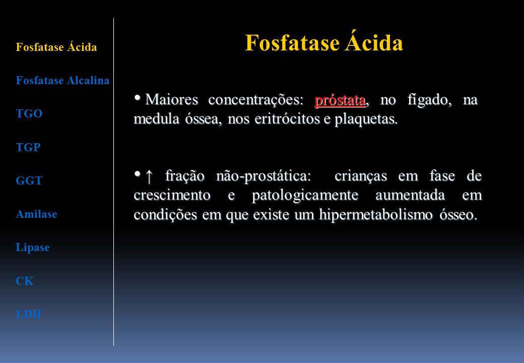 Fosfatase Ácida Fosfatase Alcalina TGO TGP GGT Amilase Lipase CK LDH Fosfatase Ácida Maiores concentrações: próstata, no fígado, na medula óssea, nos