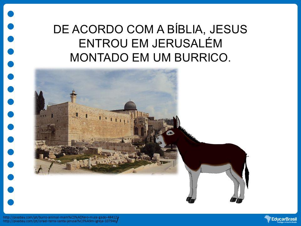 DE ACORDO COM A BÍBLIA, JESUS ENTROU EM JERUSALÉM MONTADO EM UM BURRICO. http://pixabay.com/pt/burro-animal-mam%C3%ADfero-mula-gado-48412/ http://pixa