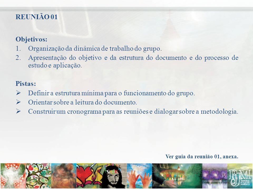 Objetivos: 1.Organização da dinâmica de trabalho do grupo. 2.Apresentação do objetivo e da estrutura do documento e do processo de estudo e aplicação.