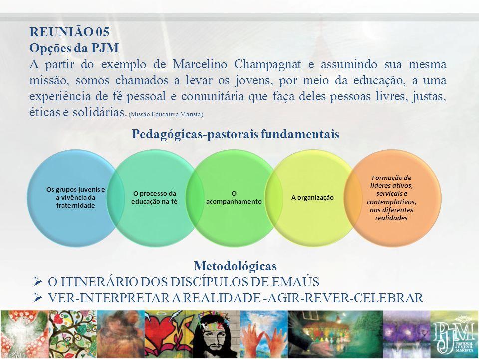 Opções da PJM A partir do exemplo de Marcelino Champagnat e assumindo sua mesma missão, somos chamados a levar os jovens, por meio da educação, a uma
