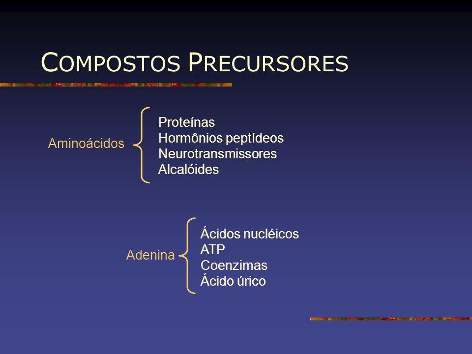 C OMPOSTOS P RECURSORES Aminoácidos Proteínas Hormônios peptídeos Neurotransmissores Alcalóides Adenina Ácidos nucléicos ATP Coenzimas Ácido úrico