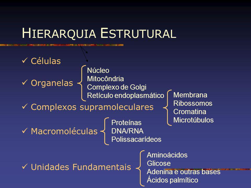 Células Organelas Complexos supramoleculares Macromoléculas Unidades Fundamentais Núcleo Mitocôndria Complexo de Golgi Retículo endoplasmático Membran