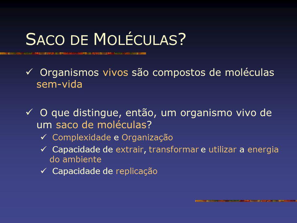 S ACO DE M OLÉCULAS ? Organismos vivos são compostos de moléculas sem-vida O que distingue, então, um organismo vivo de um saco de moléculas? Complexi