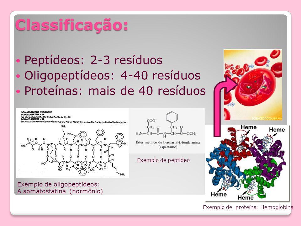 Classificação: Peptídeos: 2-3 resíduos Oligopeptídeos: 4-40 resíduos Proteínas: mais de 40 resíduos Exemplo de oligopeptideos: A somatostatina (hormôn