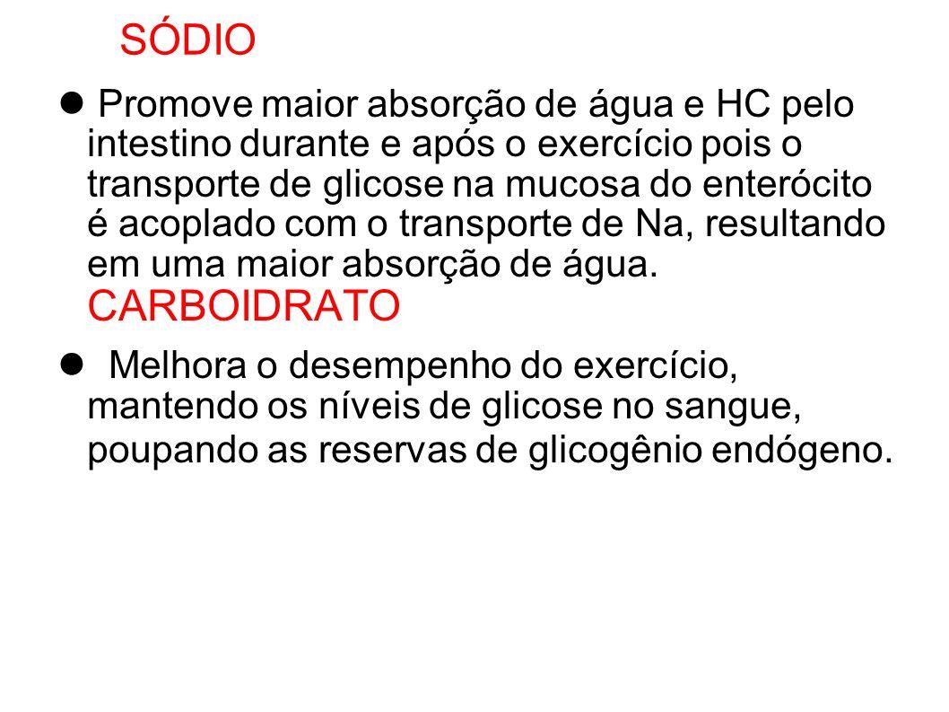 SÓDIO Promove maior absorção de água e HC pelo intestino durante e após o exercício pois o transporte de glicose na mucosa do enterócito é acoplado co