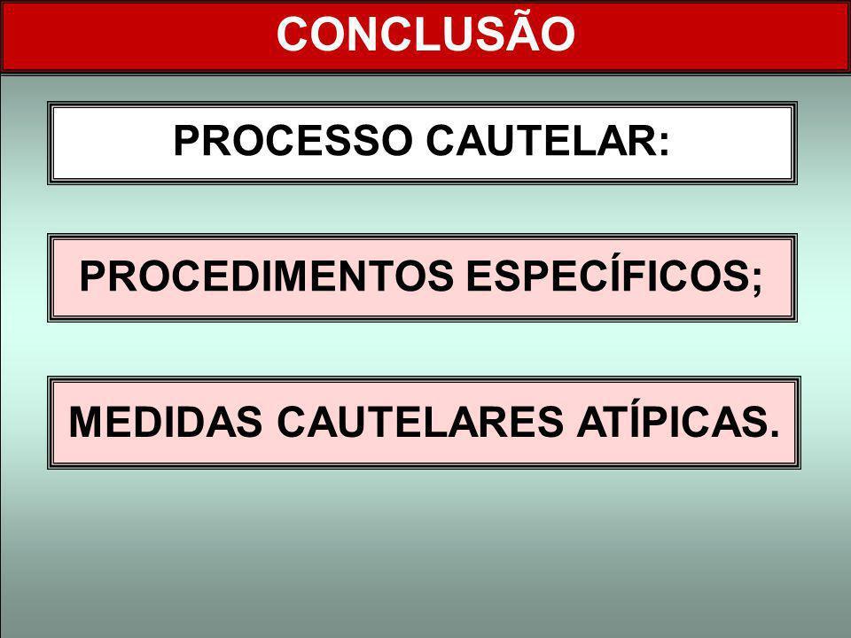 PROCESSO CAUTELAR: CONCLUSÃO PROCEDIMENTOS ESPECÍFICOS; MEDIDAS CAUTELARES ATÍPICAS.