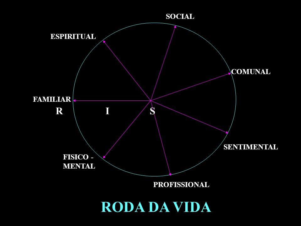 RODA DA VIDA FAMILIAR PROFISSIONAL FISICO - MENTAL SENTIMENTAL SOCIAL ESPIRITUAL COMUNAL R I S