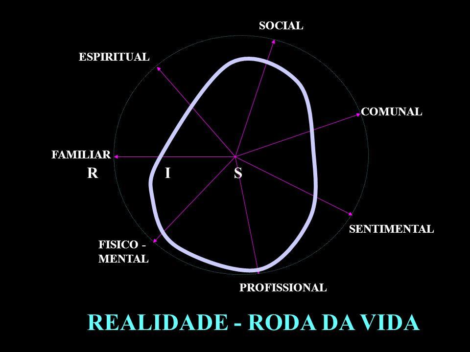 REALIDADE - RODA DA VIDA FAMILIAR PROFISSIONAL FISICO - MENTAL SENTIMENTAL SOCIAL ESPIRITUAL COMUNAL R I S