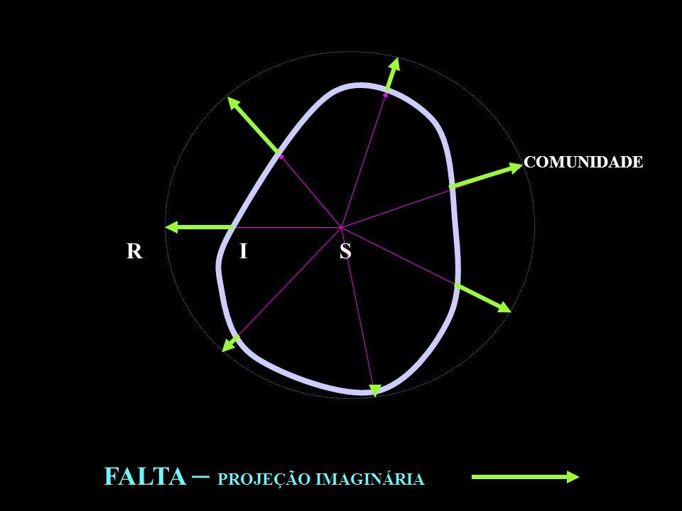 COMUNIDADE R I S FALTA – PROJEÇÃO IMAGINÁRIA