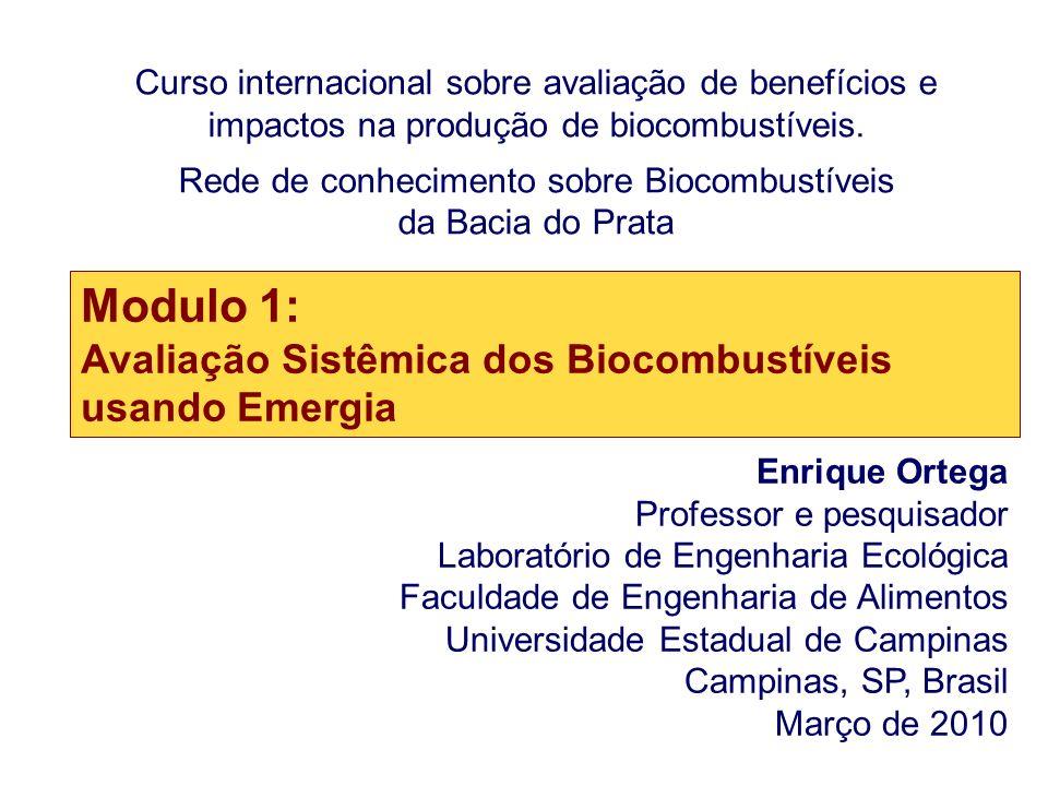 Curso internacional sobre avaliação de benefícios e impactos na produção de biocombustíveis. Rede de conhecimento sobre Biocombustíveis da Bacia do Pr