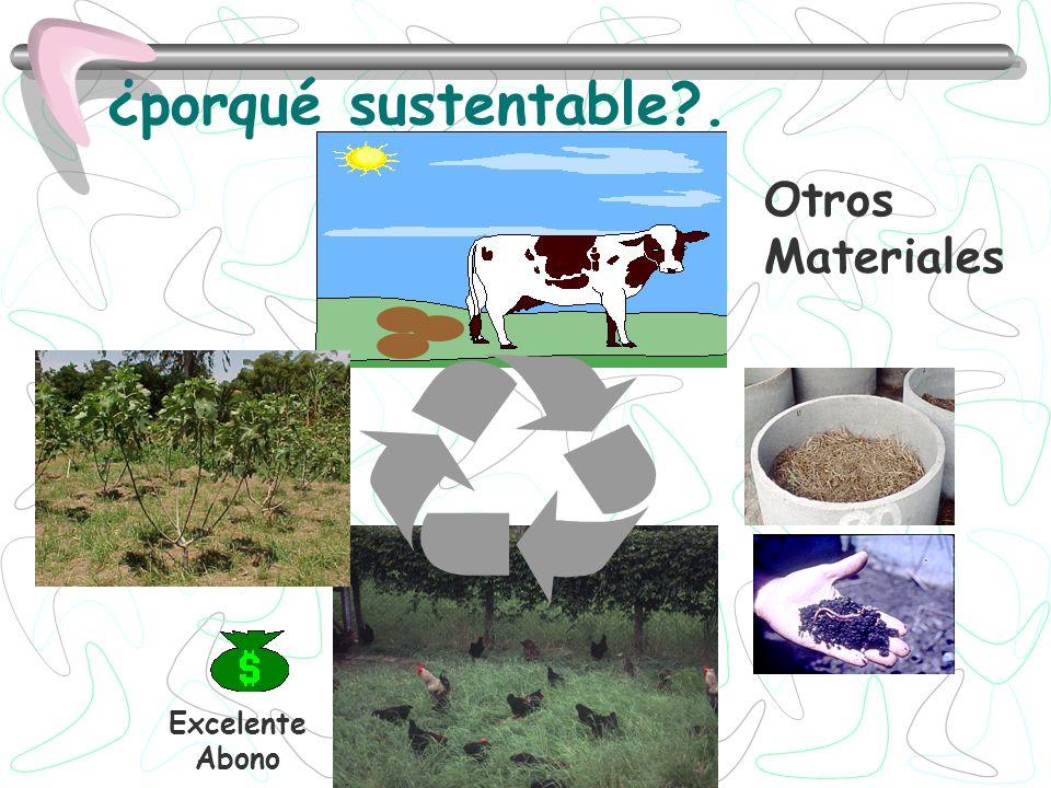 Producción de un abono orgánico natural para el suelo y los cultivos ( humus o casting).
