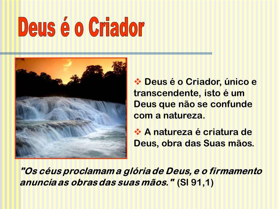 Deus é o Criador, único e transcendente, isto é um Deus que não se confunde com a natureza. A natureza é criatura de Deus, obra das Suas mãos.