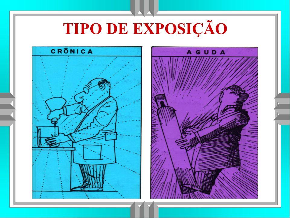 TIPO DE EXPOSIÇÃO