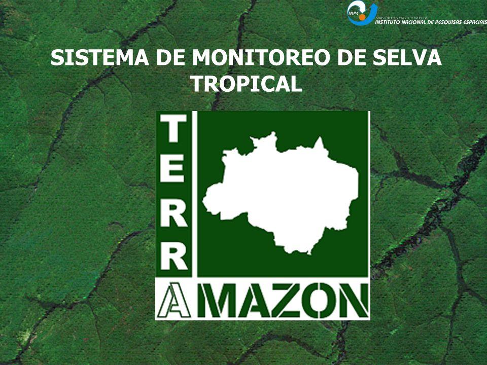 PRODUCIR MAPAS DE DEFORESTACIÓN y DEGRADACIÓN CALCULAR DE LAS TASAS ANUALES DE DEFORESTACIÓN OBJETIVO Permitir a los paises: