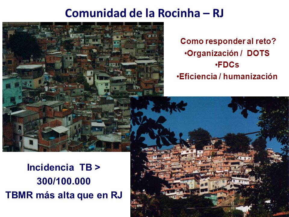 MDR TB- HIV CO-INFECCION IN BRAZIL JAN 1995 – DEC 2010 TB surveillance system Project MSH / CRPHF – FIOCRUZ - MoH On going