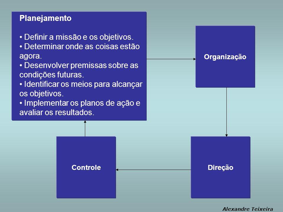 Organização Alexandre Teixeira Planejamento Definir a missão e os objetivos.