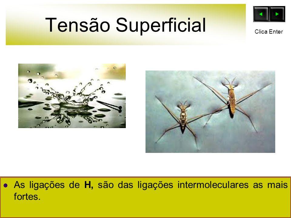 Tensão Superficial As ligações de H, são das ligações intermoleculares as mais fortes. Clica Enter